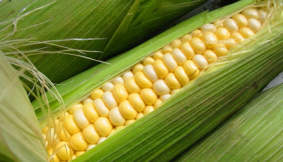 Обувь из обертки от початков кукурузы начали производить в КНДР